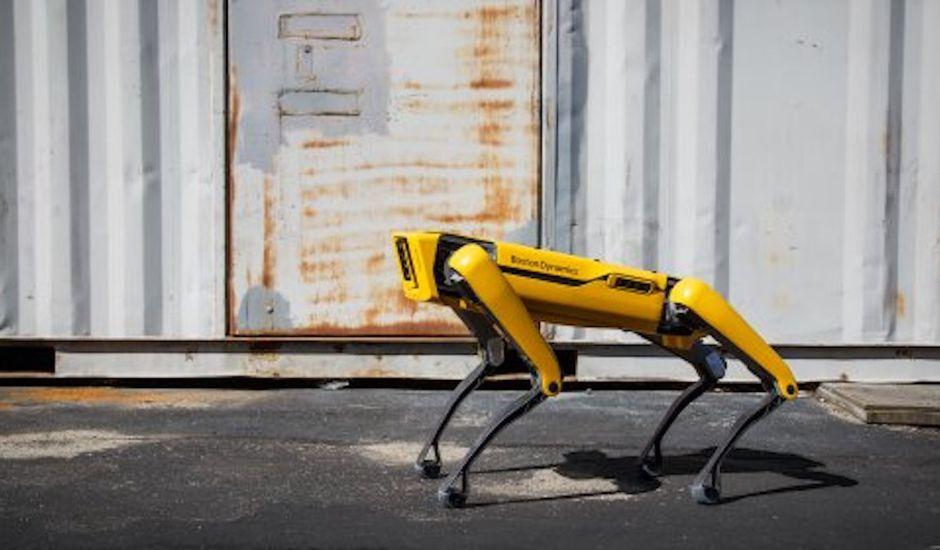 Spot Boston Dynamics © Boston Dynamics