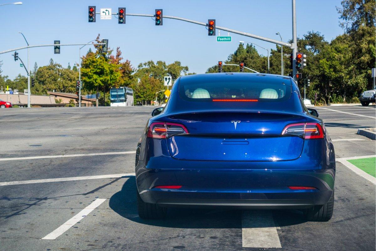 Tesla © Sundry Photography / Shutterstock.com