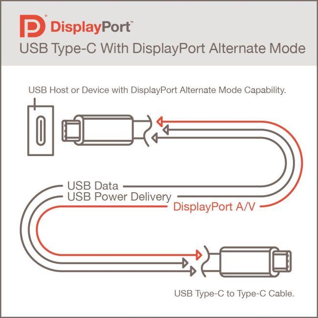 DisplayPort Alt Mode 2.0