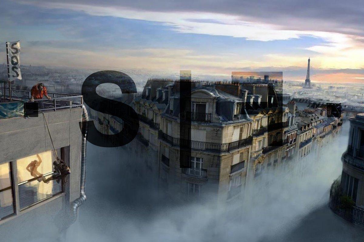 SFF Dans la brume