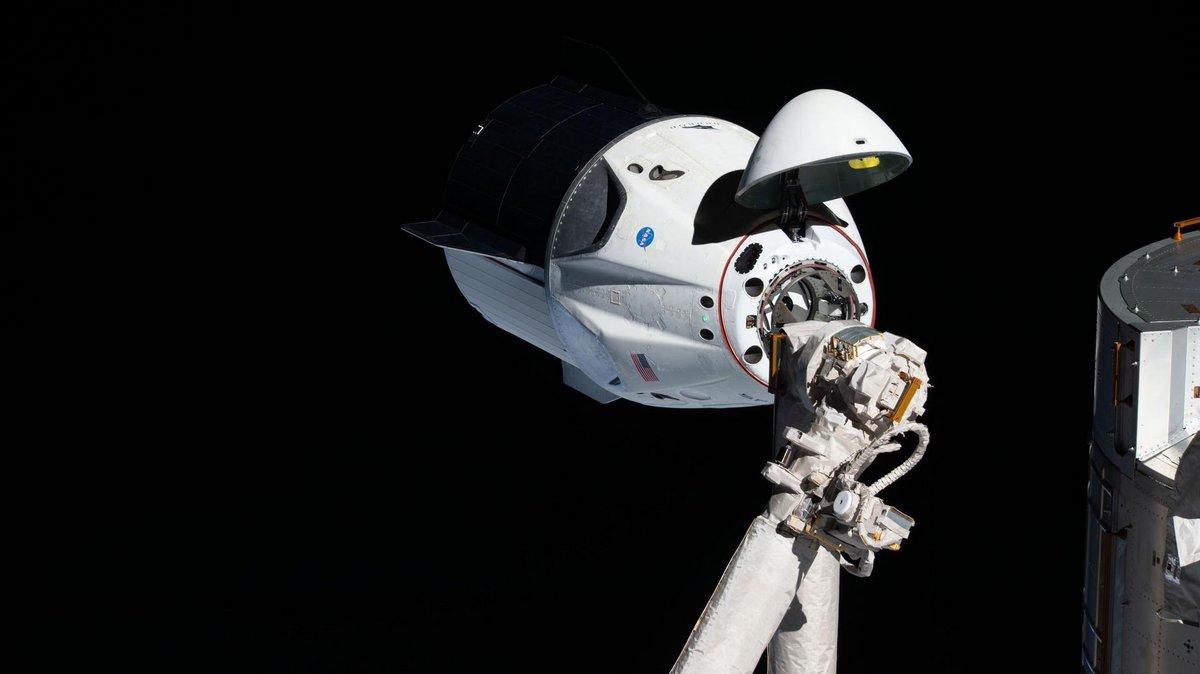 Crew Dragon © NASA