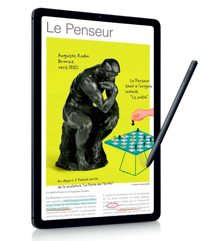 Galaxy Tab S6 Lite - Rendu