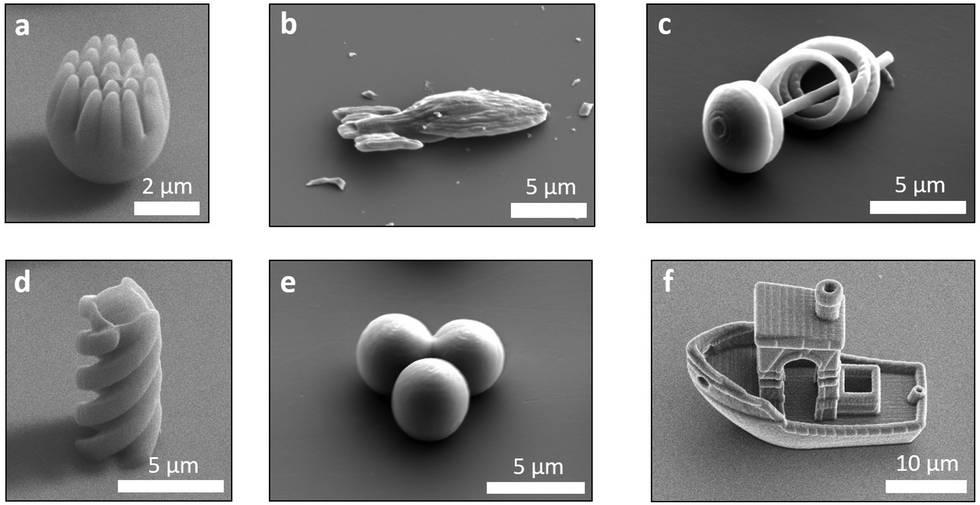 formes microscopiques