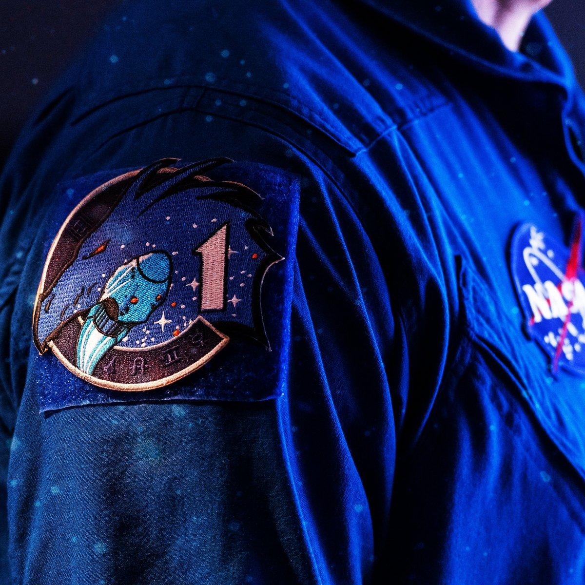 Crew-1 patch Crew Dragon NASA © NASA