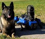 Le NYPD recrute un nouveau robot-chien