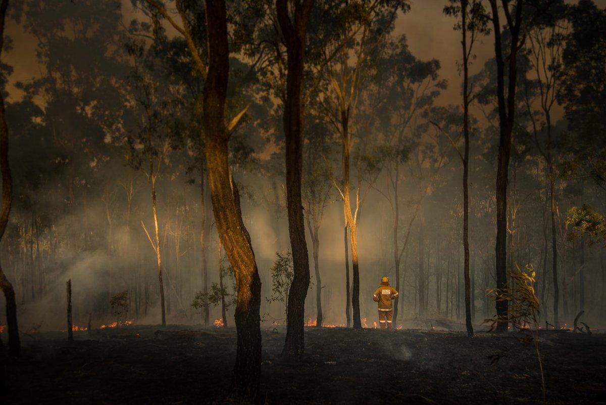Incendies australiens