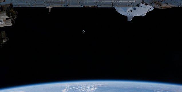 Cargo Dragon : parcours du combattant pour les expériences qui reviennent de l'ISS !