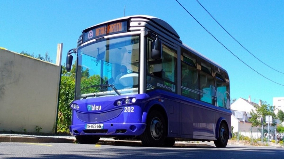 Bluebus Tours © Bluebus