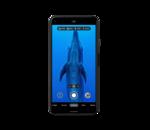 Les Google Pixel améliorent leurs photos sous-marines