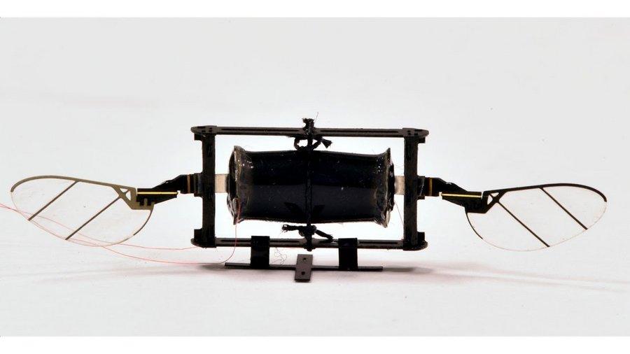 Des chercheurs du MIT ont conçu des drones s'inspirant des insectes volants - Clubic