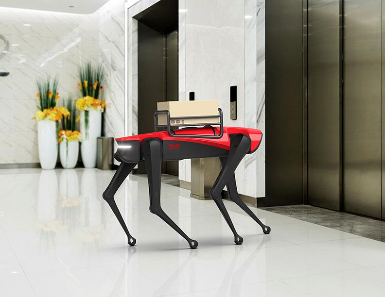 AlphaDog robot chien Weilan