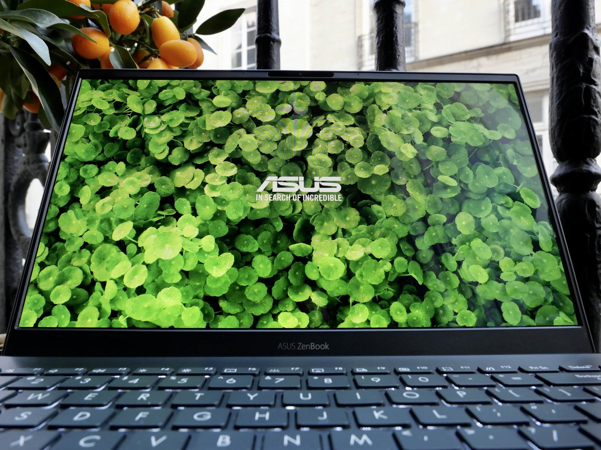 ASUS ZenBook 13 OLED-15 © © Nathan Le Gohlisse pour Clubic