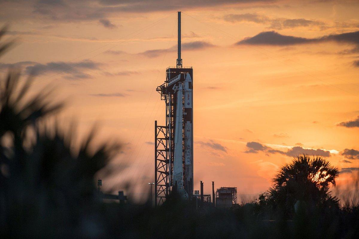 SpaceX Falcon 9 rocket with Crew Dragon © © NASA/Joel Kowsky