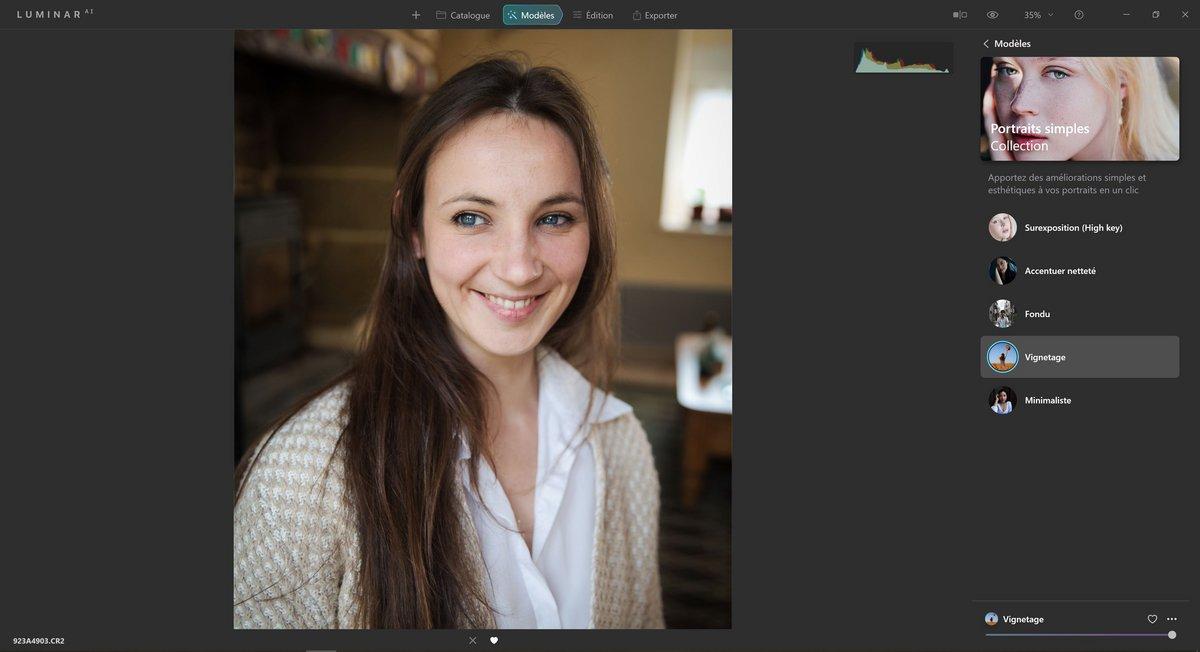 Luminar AI capture d'interface © Lola Gréco