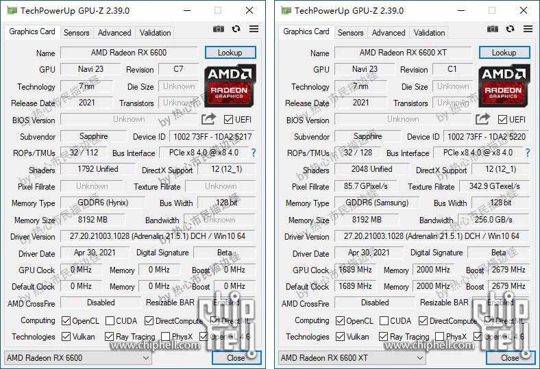 AMD Radeon RX 6600 et 6600 XT © Chiphell