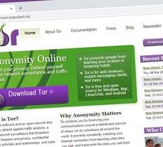 Tor Project vend la première URL .onion sous forme d'un NFT pour 500 ETH (1,4M €)
