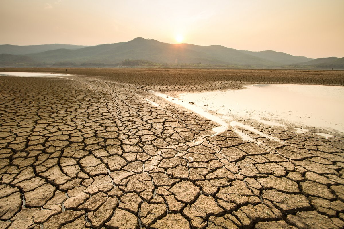 sécheresse © Shutterstock