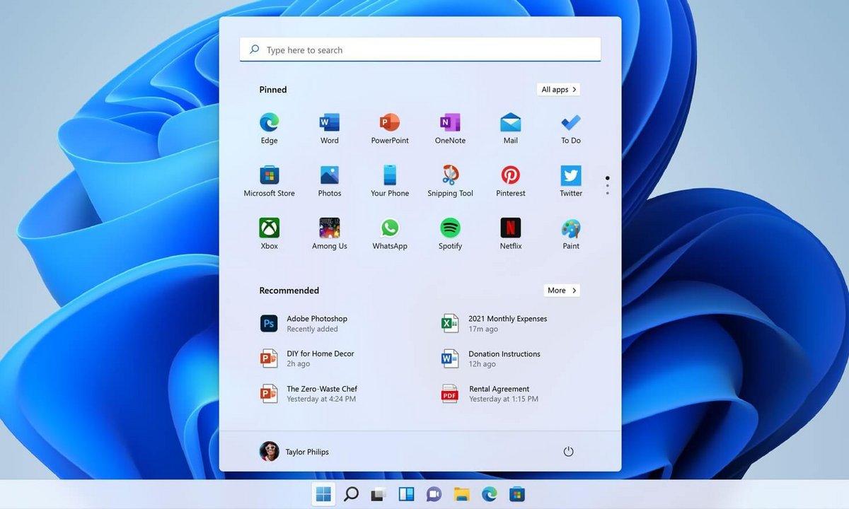 Windows 11 - Barre de recherche © Windows Latest