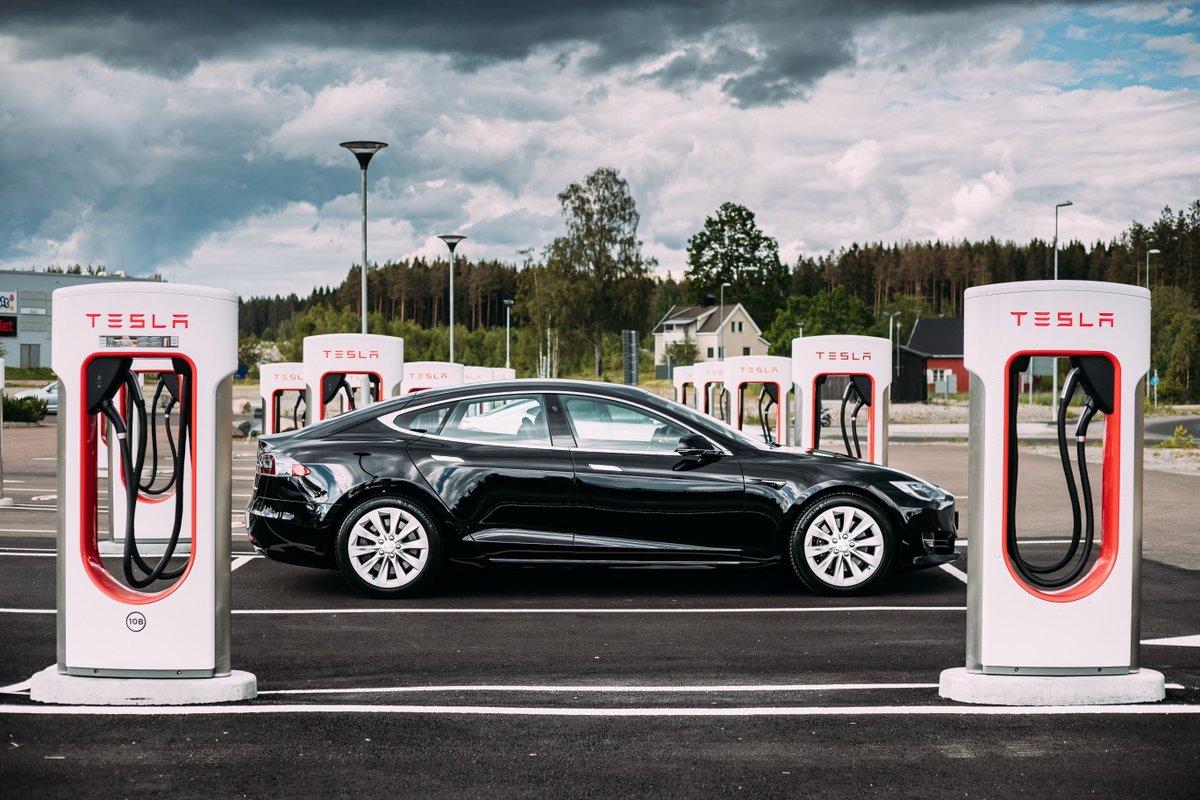 Tesla © Grisha Bruev / Shutterstock.com