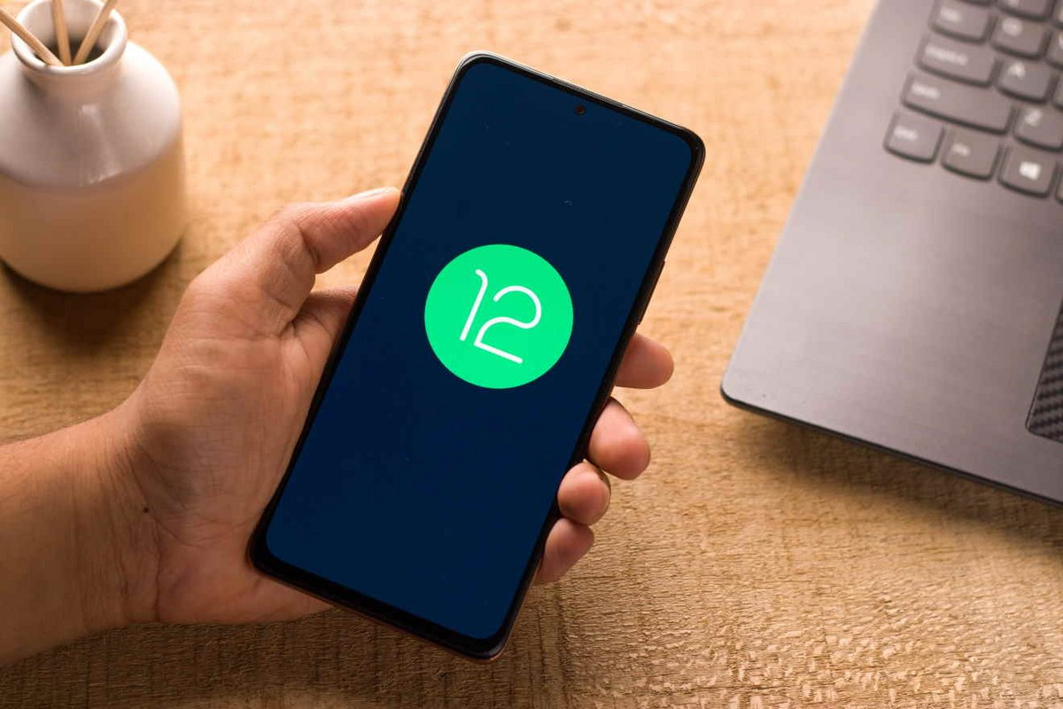 Android 12 © sdx15 / Shutterstock.com