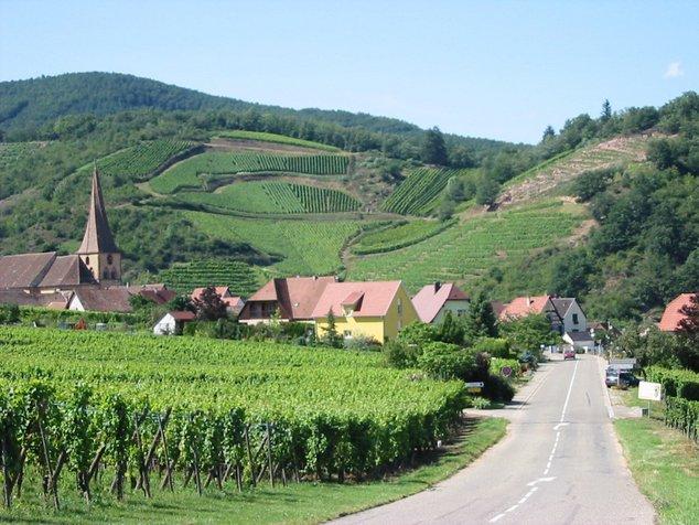 route des vins d