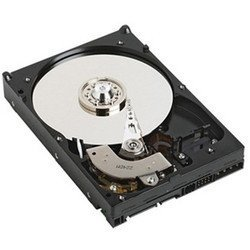 Enterprise - 600 Go SAS (S26361-F5532-L560)Interne 15000 tours / minute 600 Go Série Attachée SCSI (SAS)